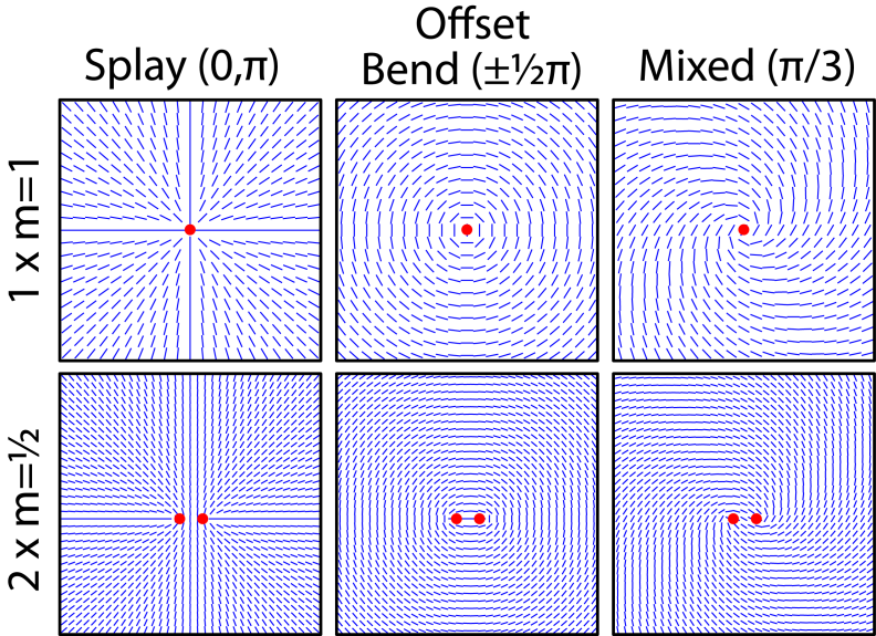 Chapter 4 Orientational Texture and Defects in DOPC DPPC Bilayers 4.