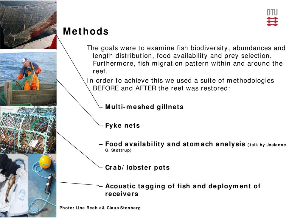 In order to achieve this we used a suite of methodologies BEFORE and AFTER the reef was restored: Multi-meshed gillnets Fyke nets Food