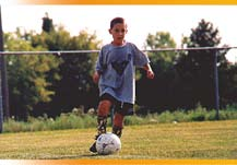 2. Ensure that within two years all middle and high school students and teachers are surveyed for their views on the school s learning environment, safety and prevention of bullying, violence, dating