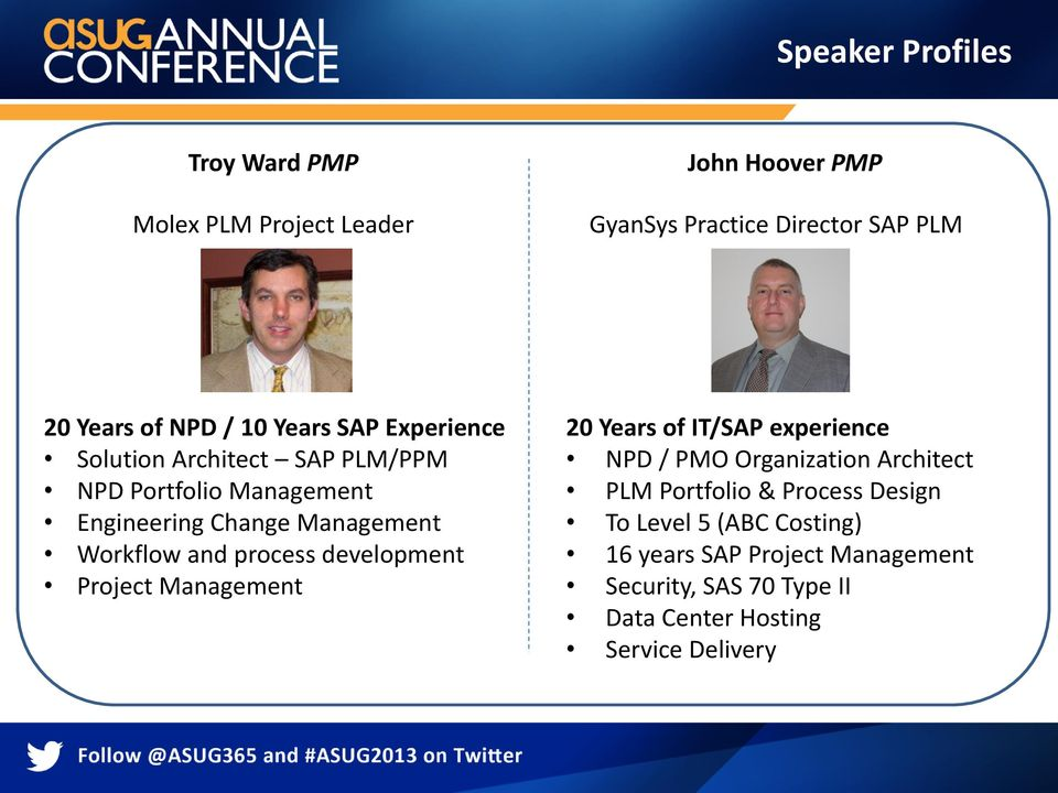 process development Project Management 20 Years of IT/SAP experience NPD / PMO Organization Architect PLM Portfolio &