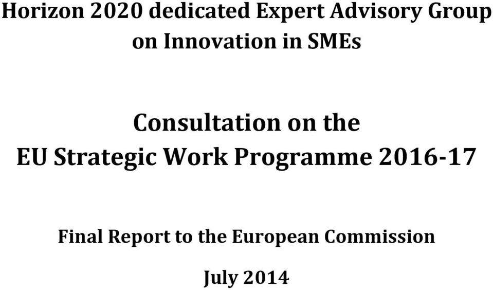 on the EU Strategic Work Programme 2016 17