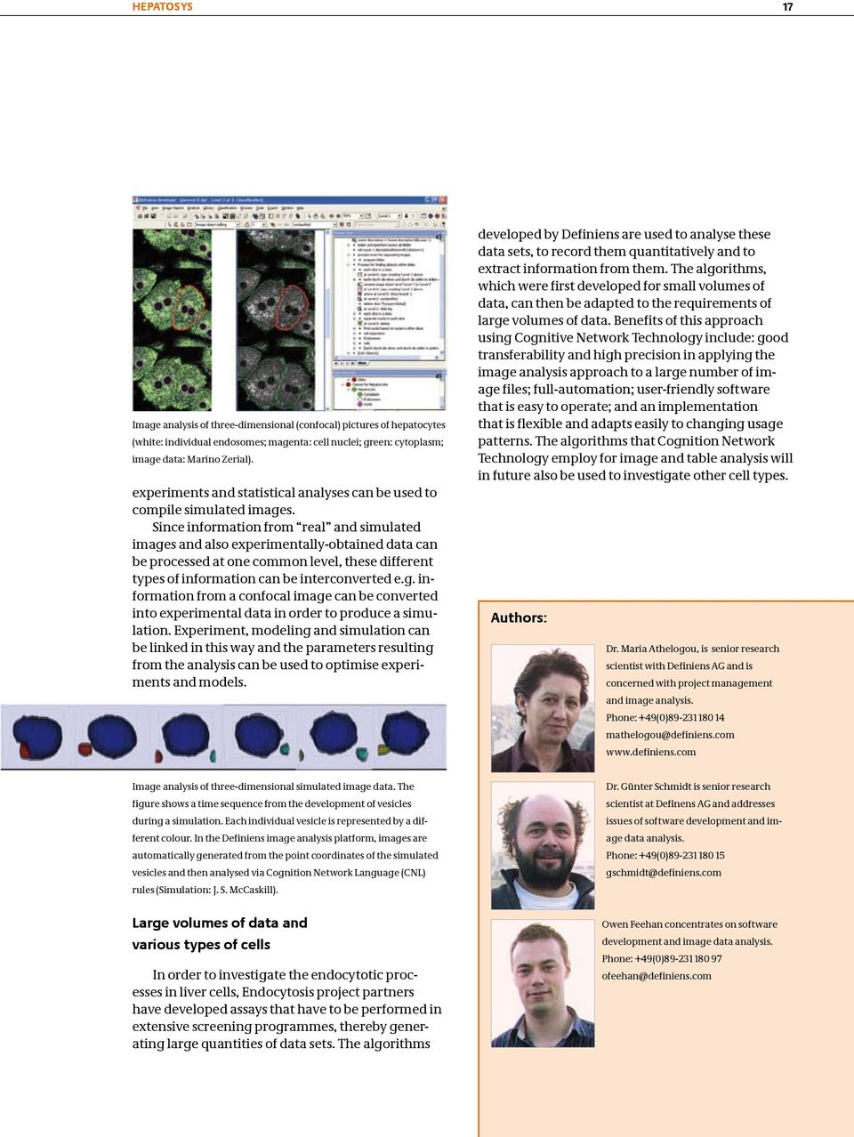 Since information from real and simulated images and also experimentally-obtained data can be processed at one common level, these different types of information can be interconverted e.g. information from a confocal image can be converted into experimental data in order to produce a simulation.