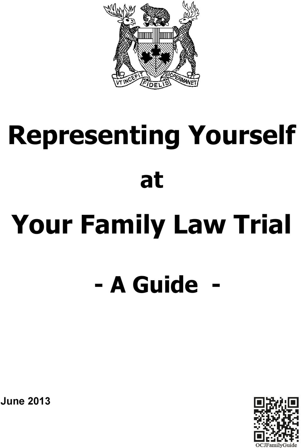 Family Law Trial