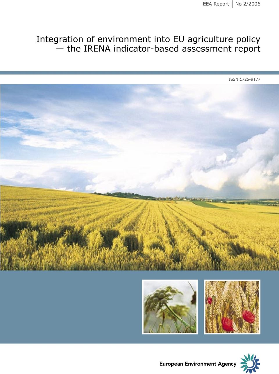 agriculture policy the IRENA