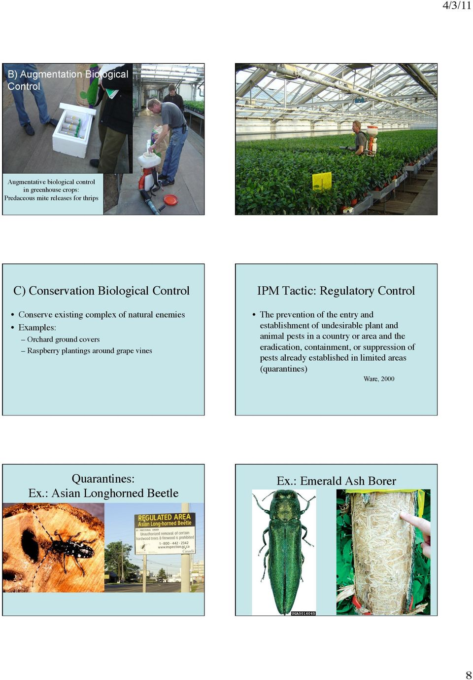 Regulatory Control The prevention of the entry and establishment of undesirable plant and animal pests in a country or area and the eradication,