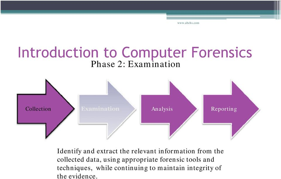 information from the collected data, using appropriate forensic