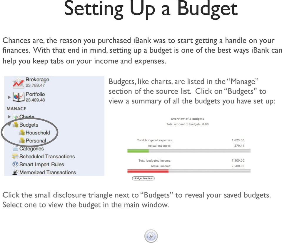 Budgets, like charts, are listed in the Manage section of the source list.
