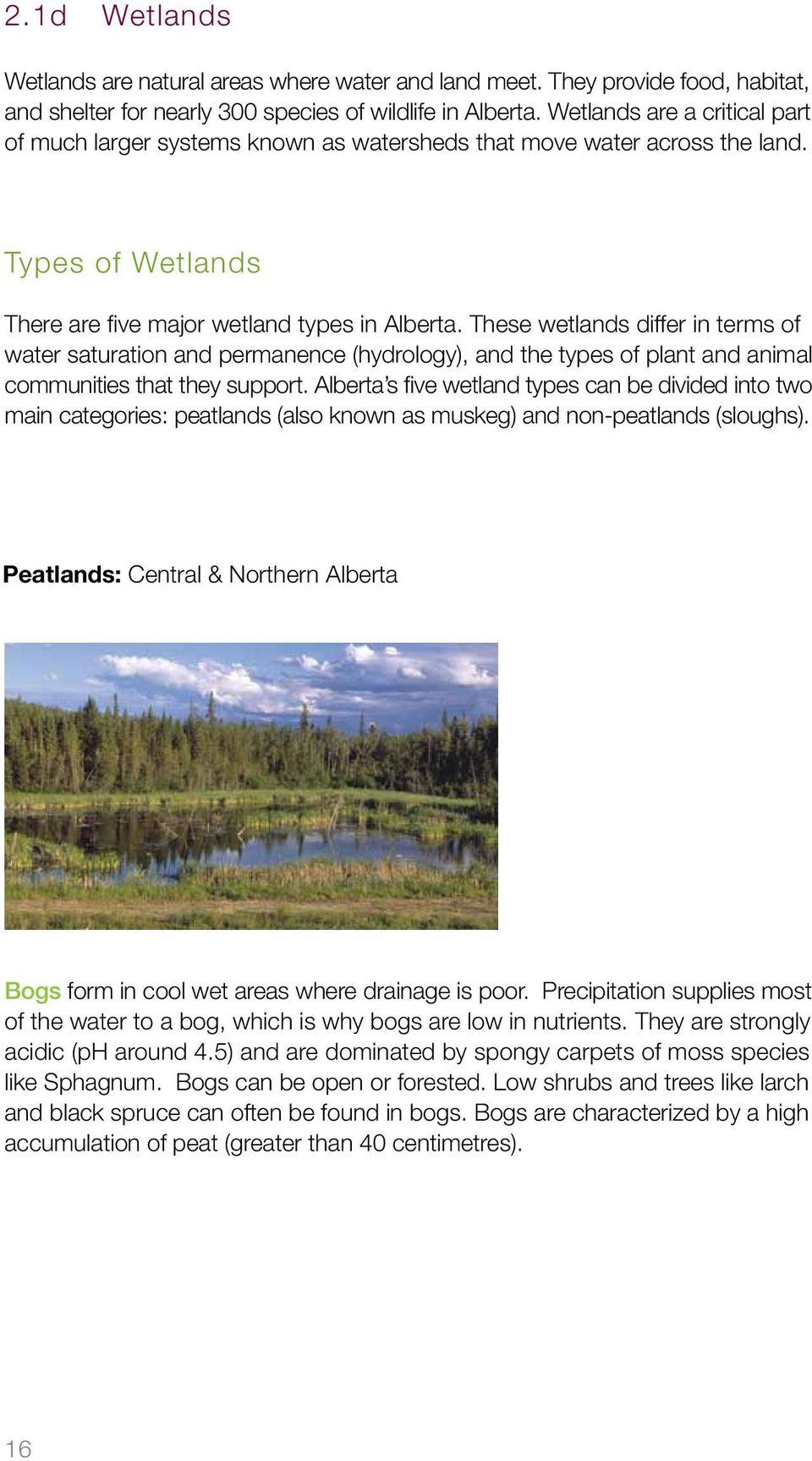 These wetlands differ in terms of water saturation and permanence (hydrology), and the types of plant and animal communities that they support.