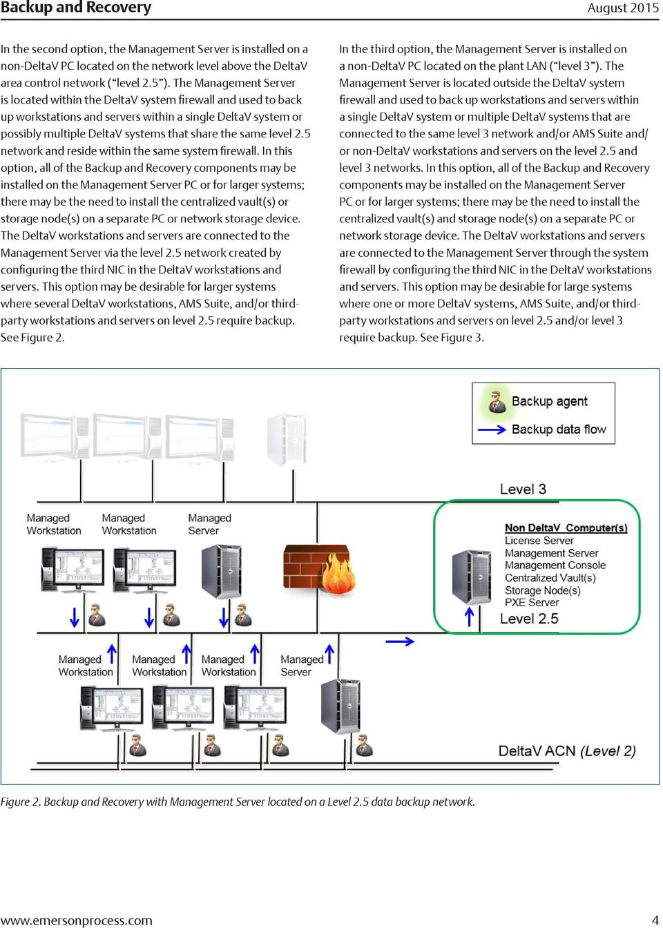 level 2.5 network and reside within the same system firewall.