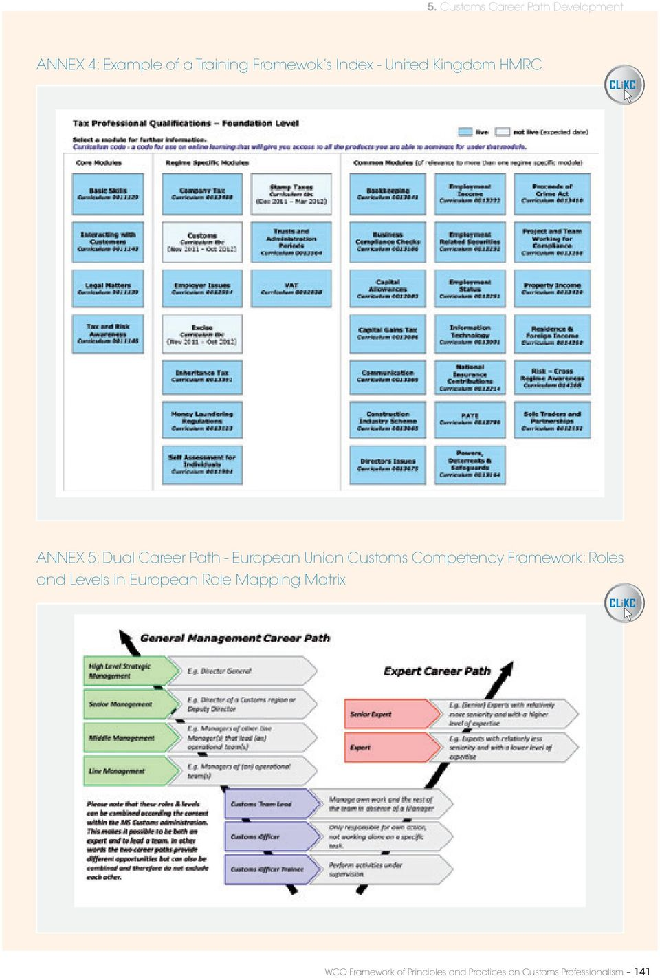Customs Competency Framework: Roles and Levels in European Role Mapping