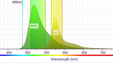 wavelegnth (l) Quantum output Ratio between the number of emitted photons and the number of absorbed photons CD8-PerCP CD8-FITC CD8-ECD CD8-APC Extinct coefficient e Measurement of a reference