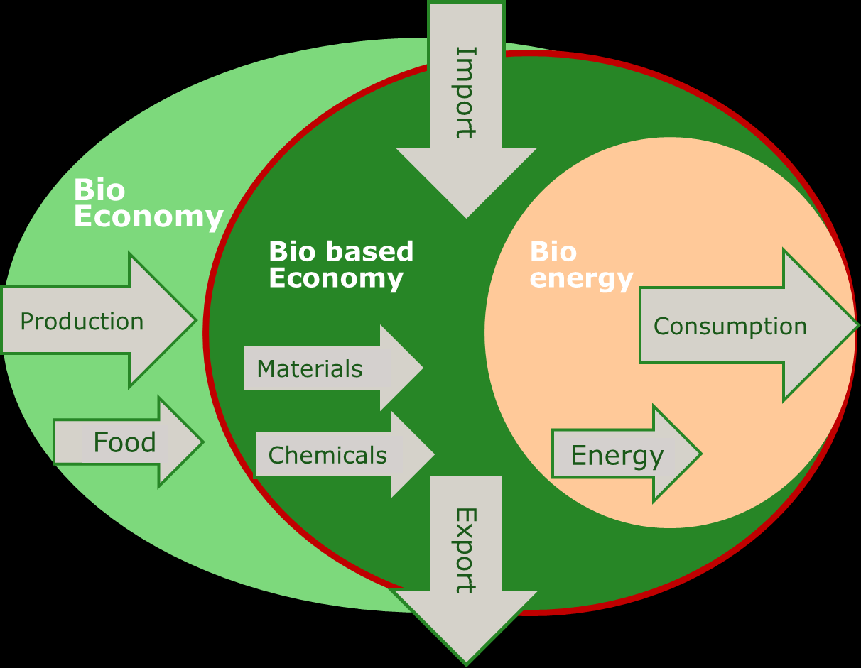 Definitions Bioeconomy Economic activities based on microbial, vegetable or animal resources, e.g. recently fixed biotic /organic carbon.