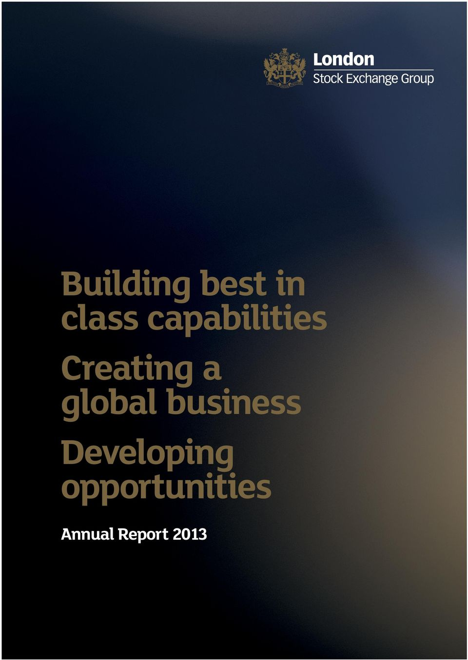 business Developing opportunities Annual Report 2013