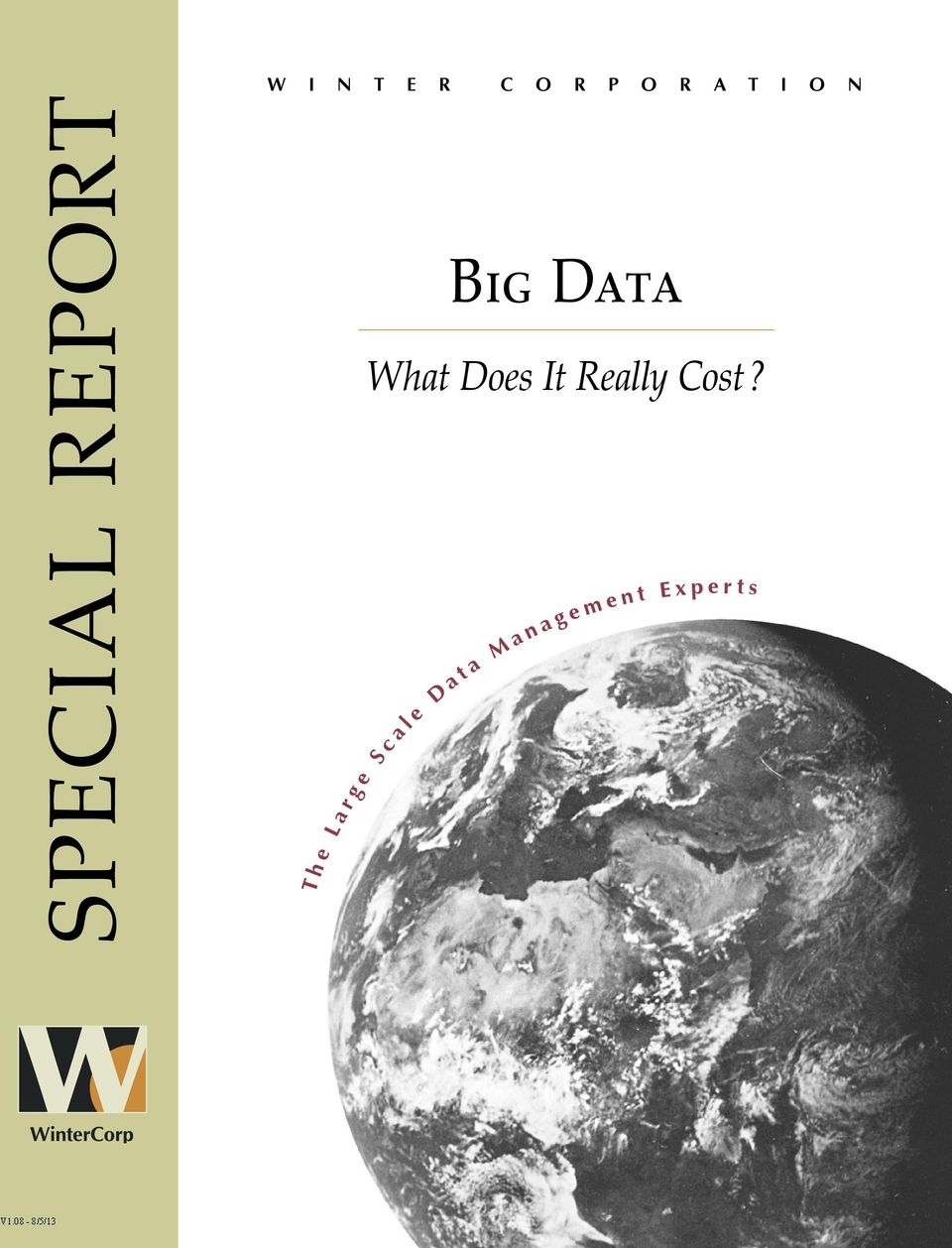 e Big Data What Does It Really Cost?