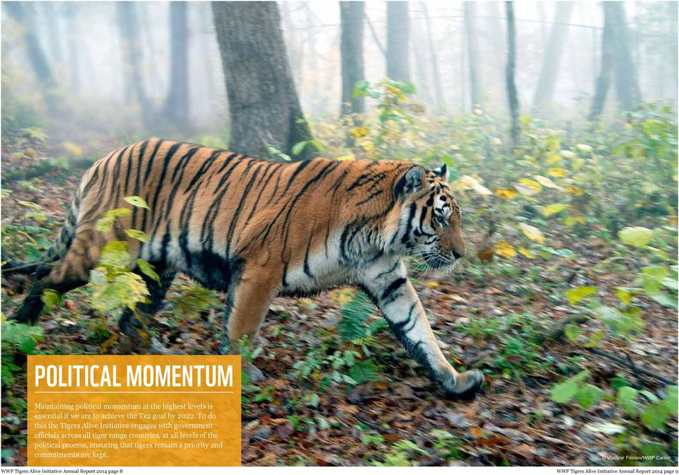 To do this the Tigers Alive Initiative engages with government officials across all tiger range countries, at all