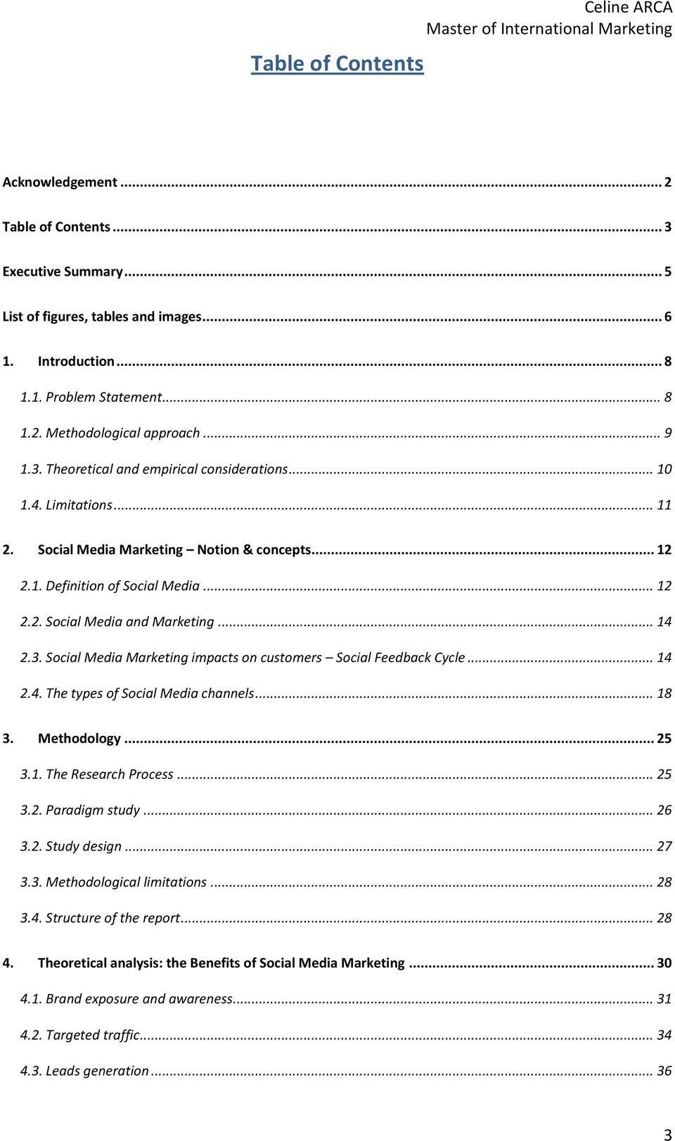 .. 14 2.3. Social Media Marketing impacts on customers Social Feedback Cycle... 14 2.4. The types of Social Media channels... 18 3. Methodology... 25 3.1. The Research Process... 25 3.2. Paradigm study.