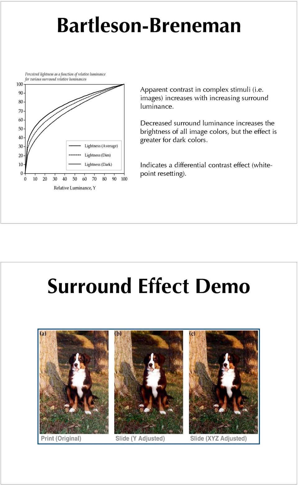 in complex stimuli (i.e. images) increases with increasing surround luminance.