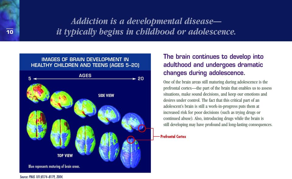 One of the brain areas still maturing during adolescence is the prefrontal cortex the part of the brain that enables us to assess situations, make sound decisions, and keep our emotions and desires