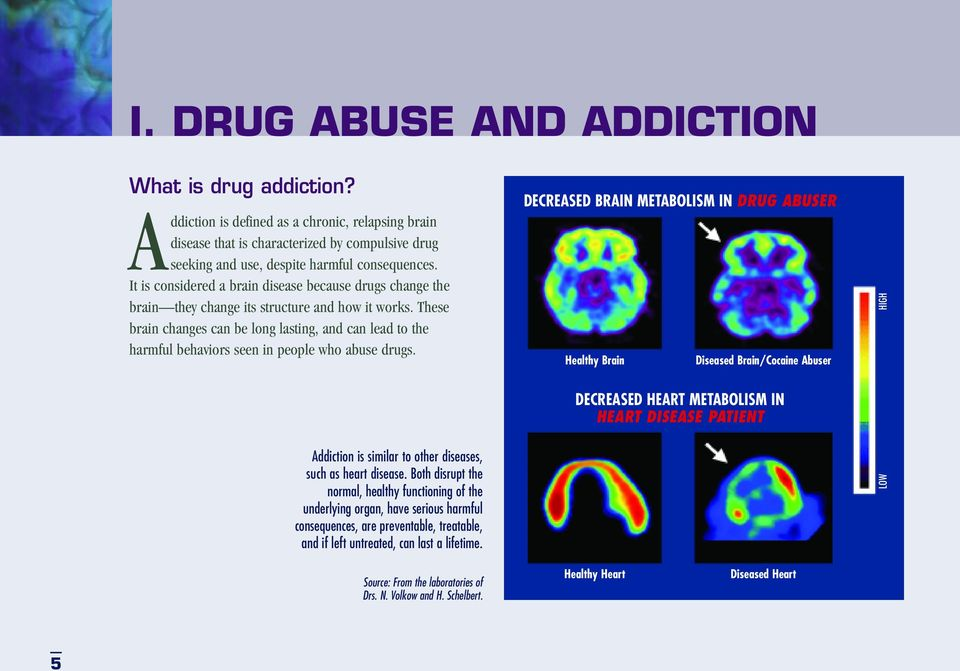 These brain changes can be long lasting, and can lead to the harmful behaviors seen in people who abuse drugs.