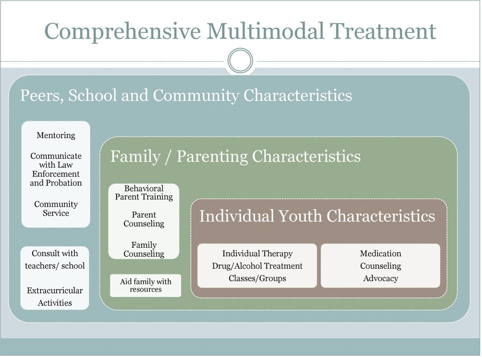 Counseling Individual Youth Characteristics Consult with Family Counseling Individual Therapy Medication