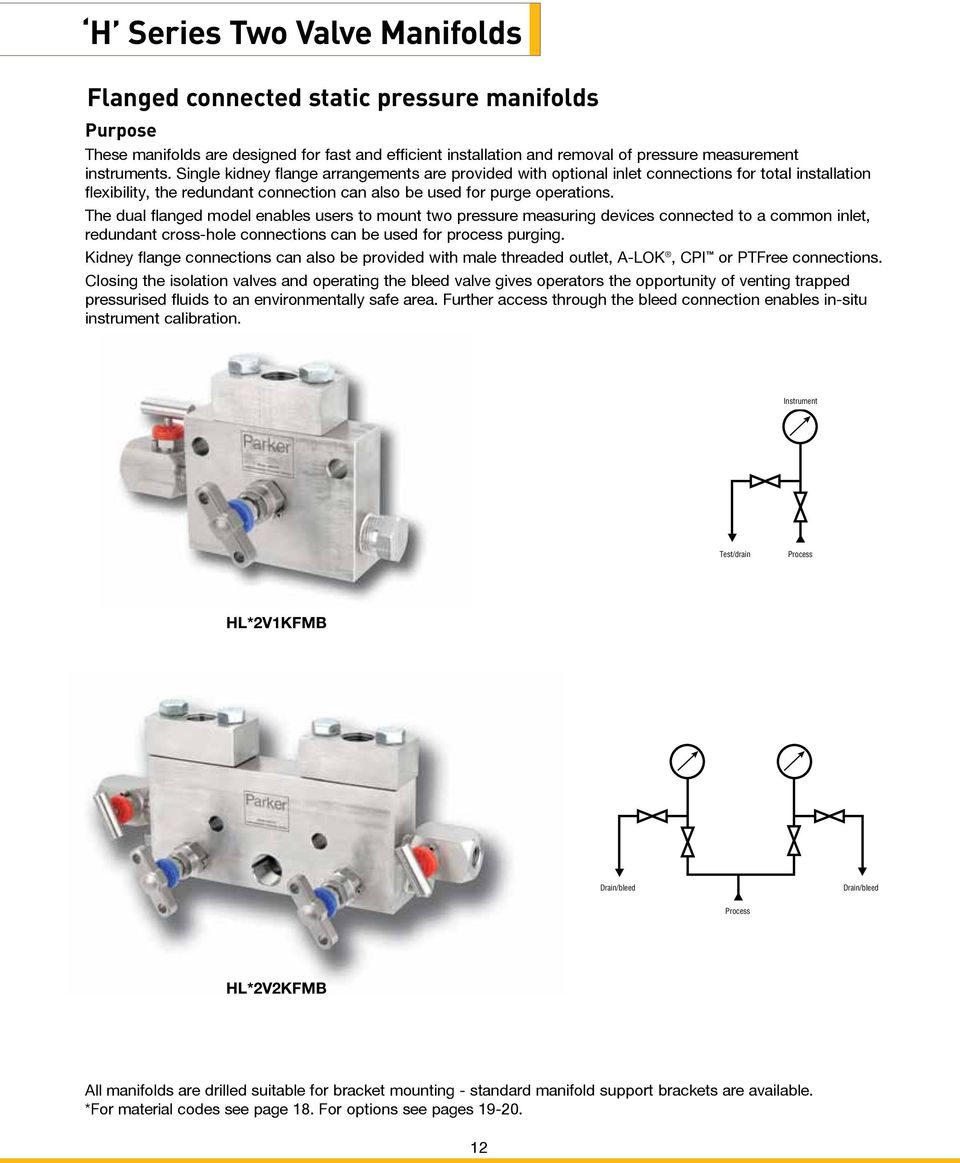 The dual flanged model enables users to mount two pressure measuring devices connected to a common inlet, redundant cross-hole connections can be used for process purging.