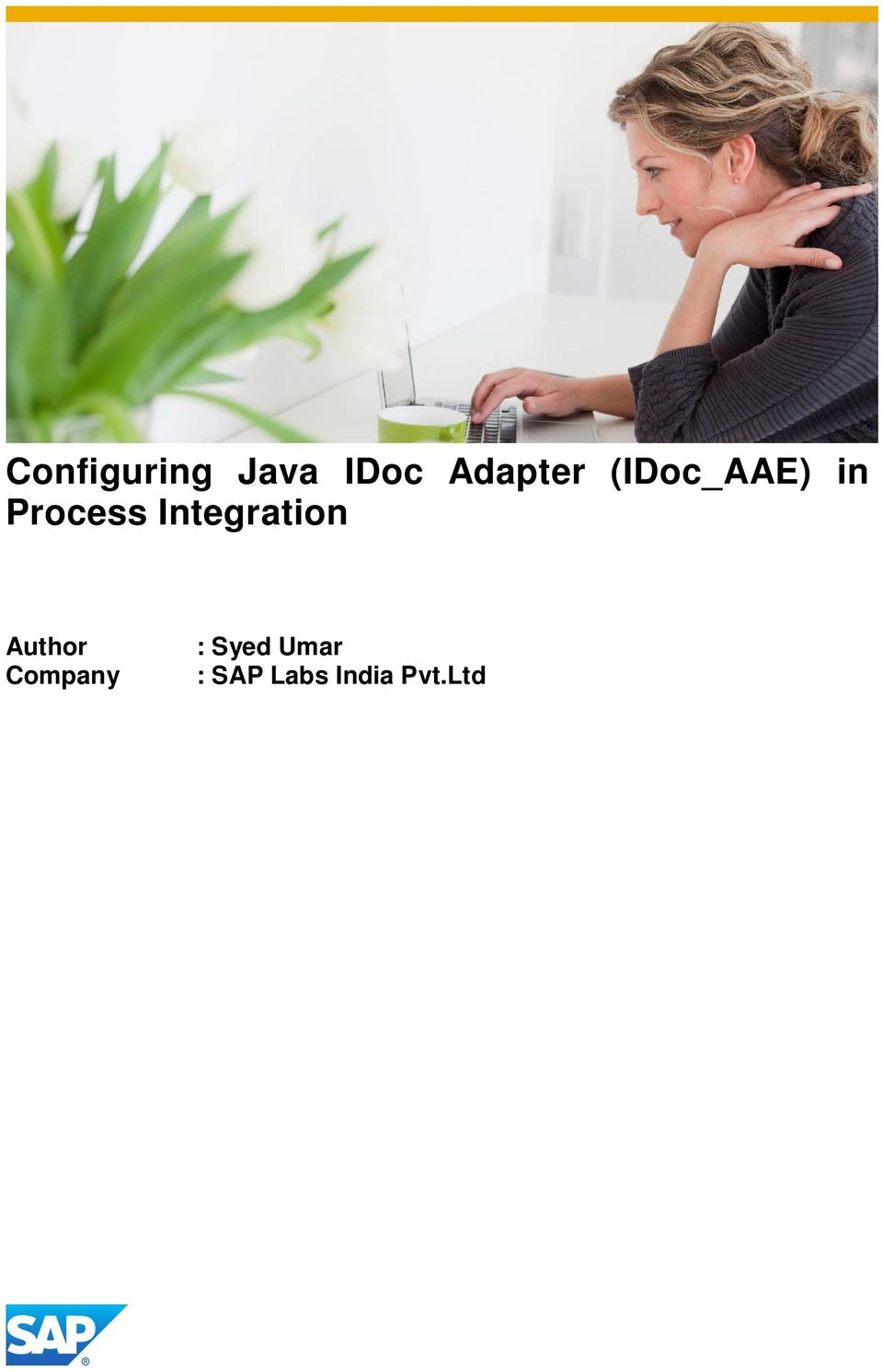 Process Integration Author