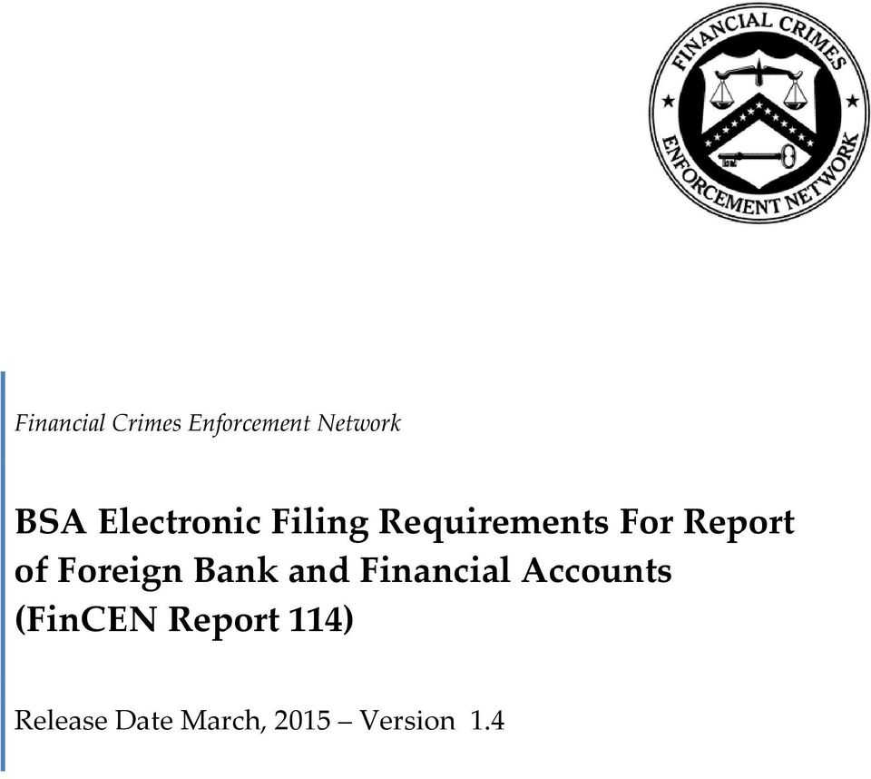 Financial Accounts (FinCEN Report