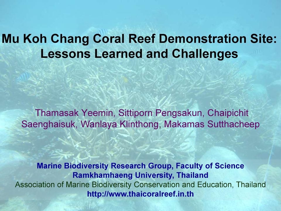 Biodiversity Research Group, Faculty of Science Ramkhamhaeng University, Thailand