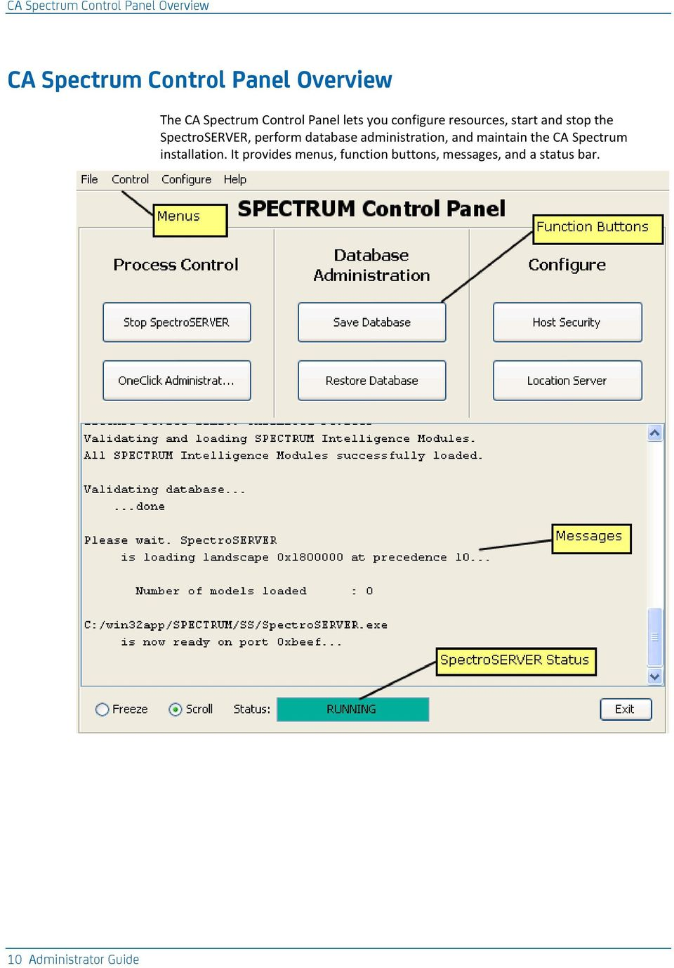 SpectroSERVER, perform database administration, and maintain the CA Spectrum