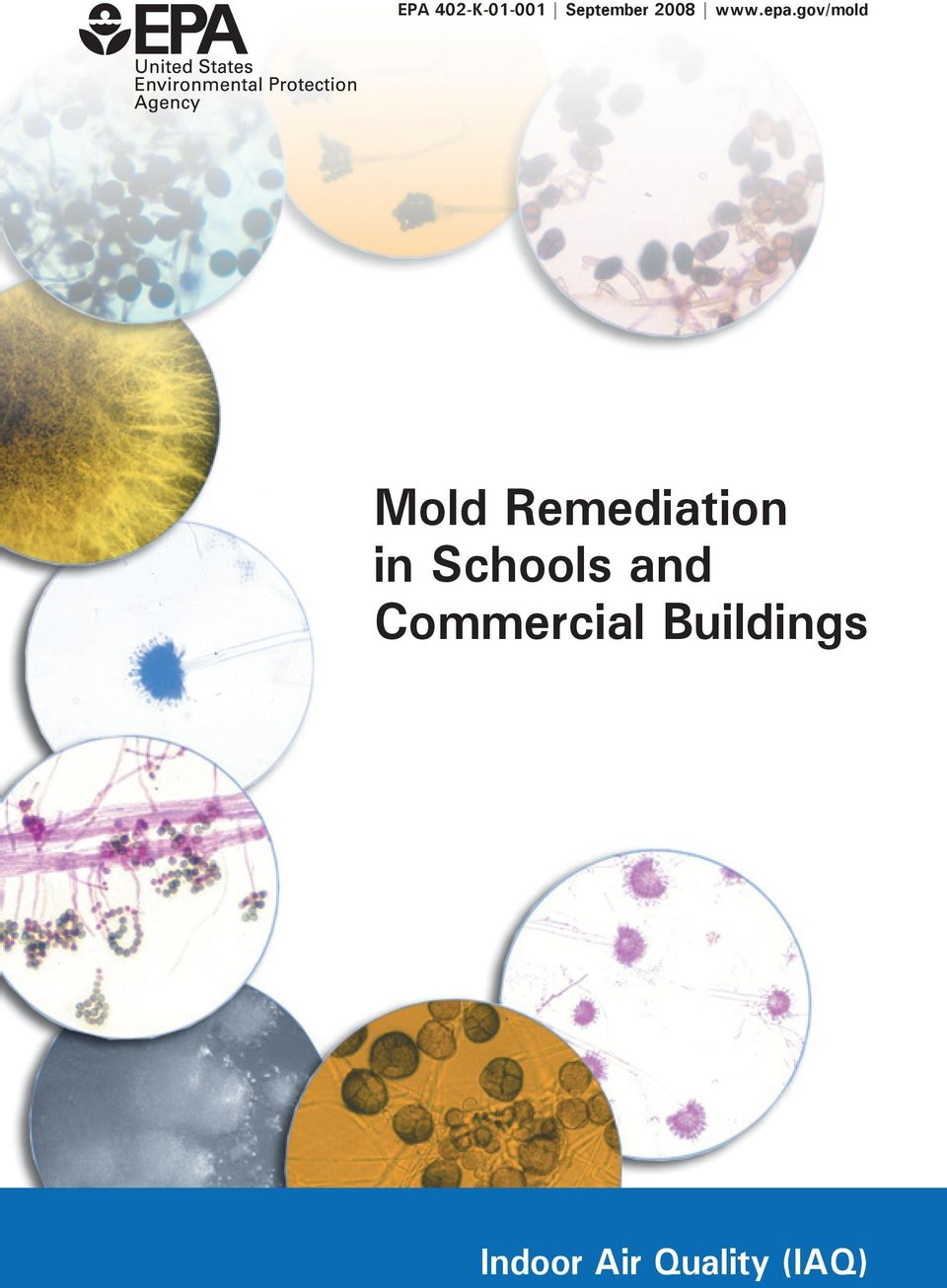 gov/mold Mold Remediation in