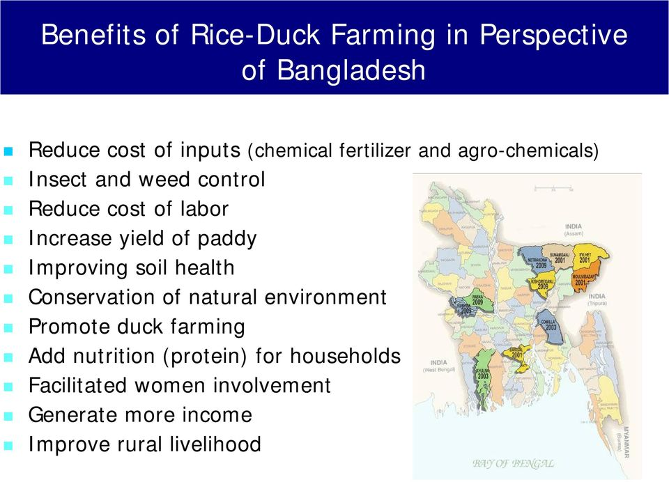 paddy Improving soil health Conservation of natural environment Promote duck farming Add