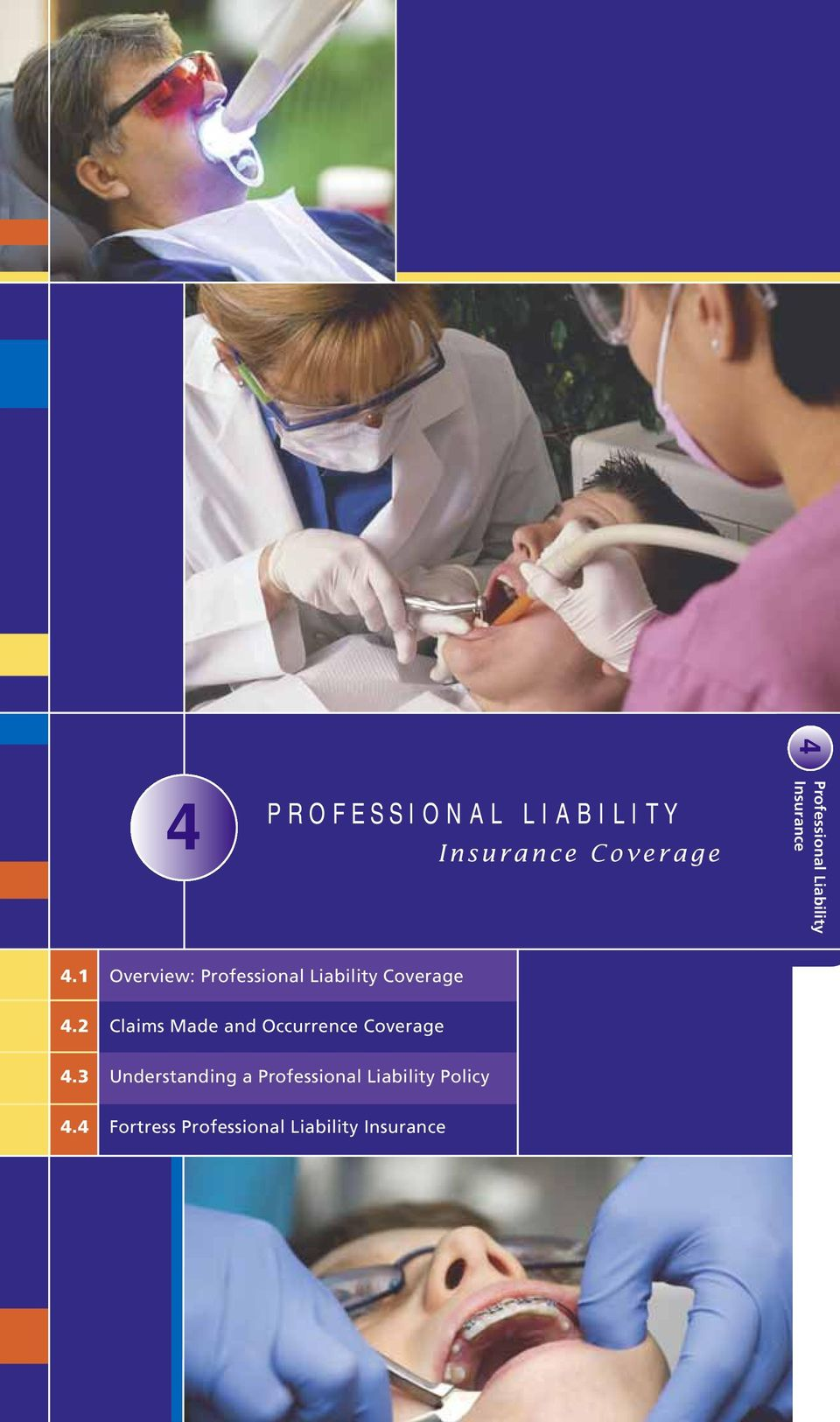 1 Overview: Professional Liability Coverage 4.