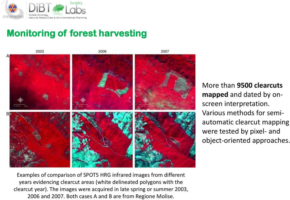 Examples of comparison of SPOT5 HRG infrared images from different years evidencing clearcut areas (white delineated