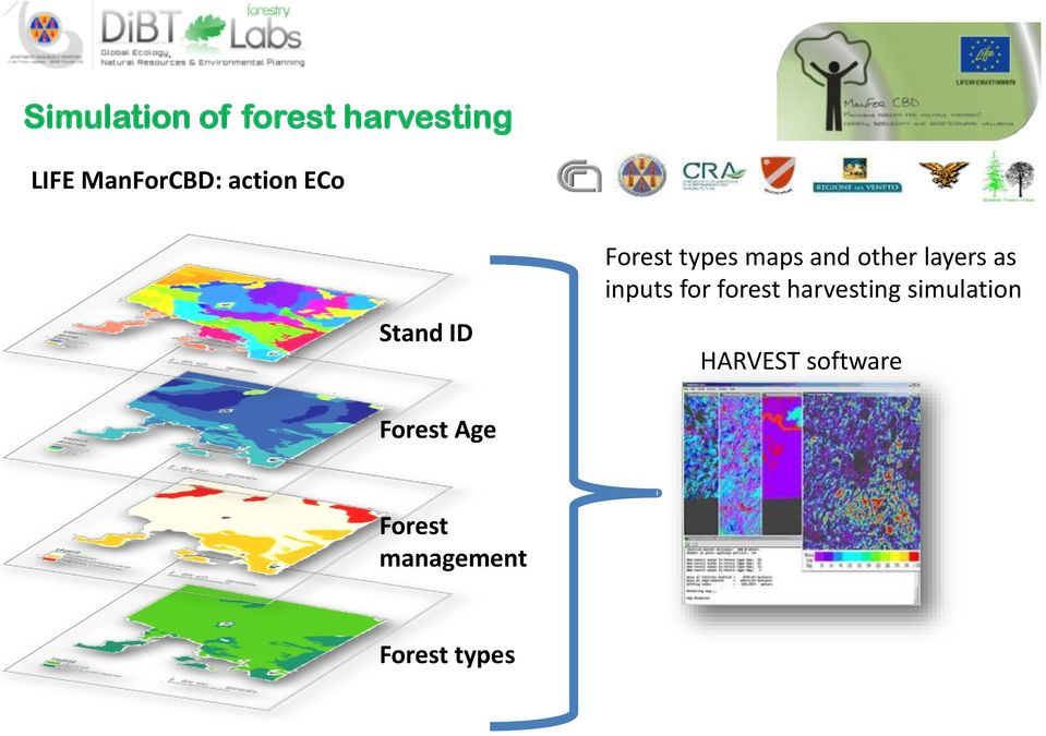 layers as inputs for forest harvesting simulation