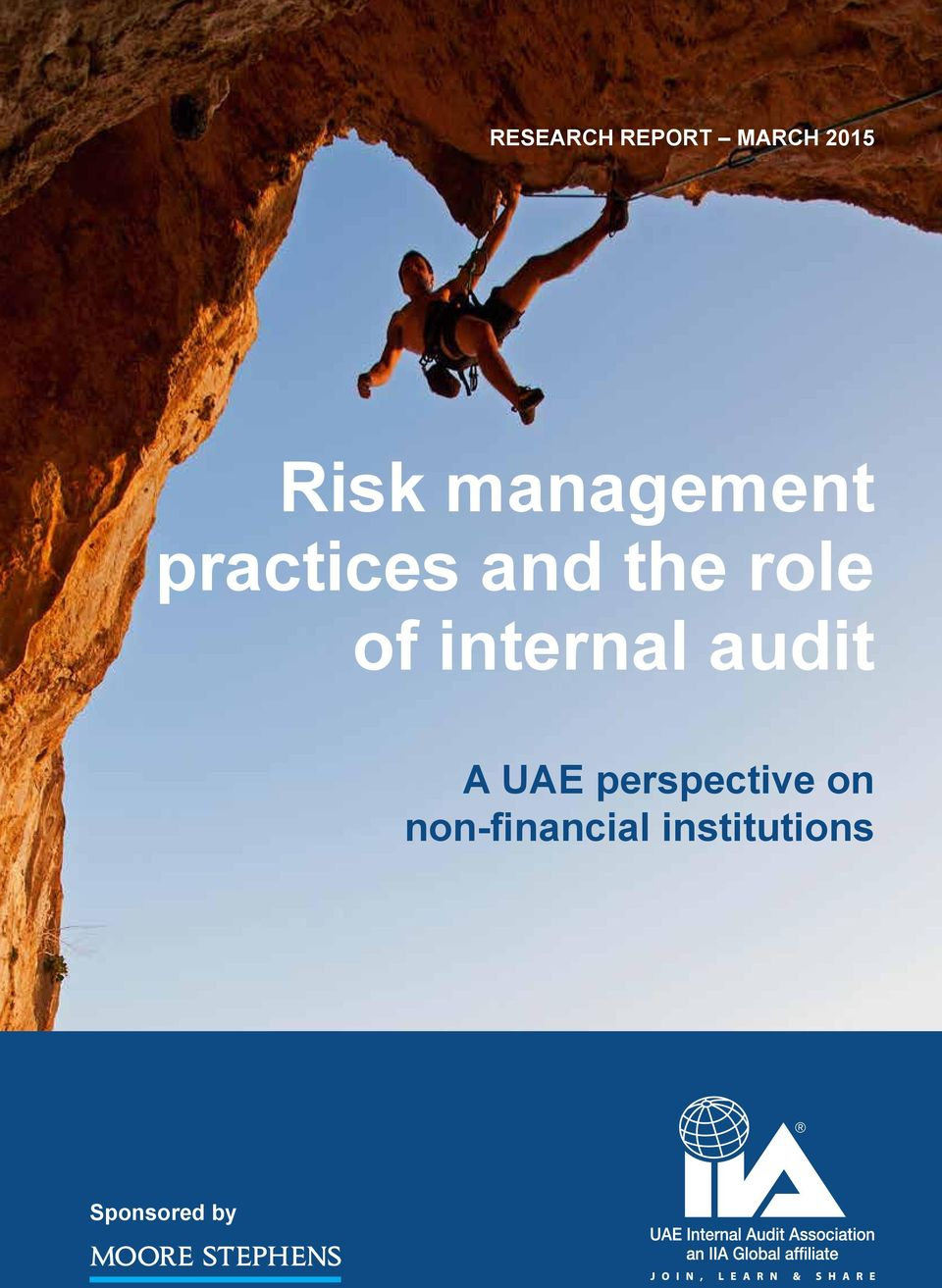 practices and the role of internal audit A UAE