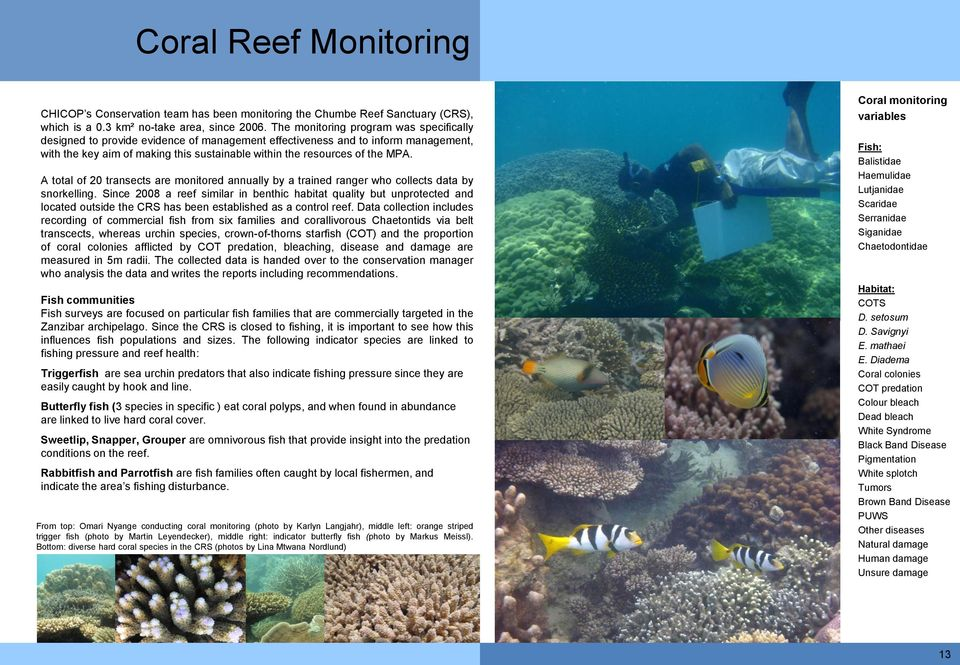 A total of 20 transects are monitored annually by a trained ranger who collects data by snorkelling.