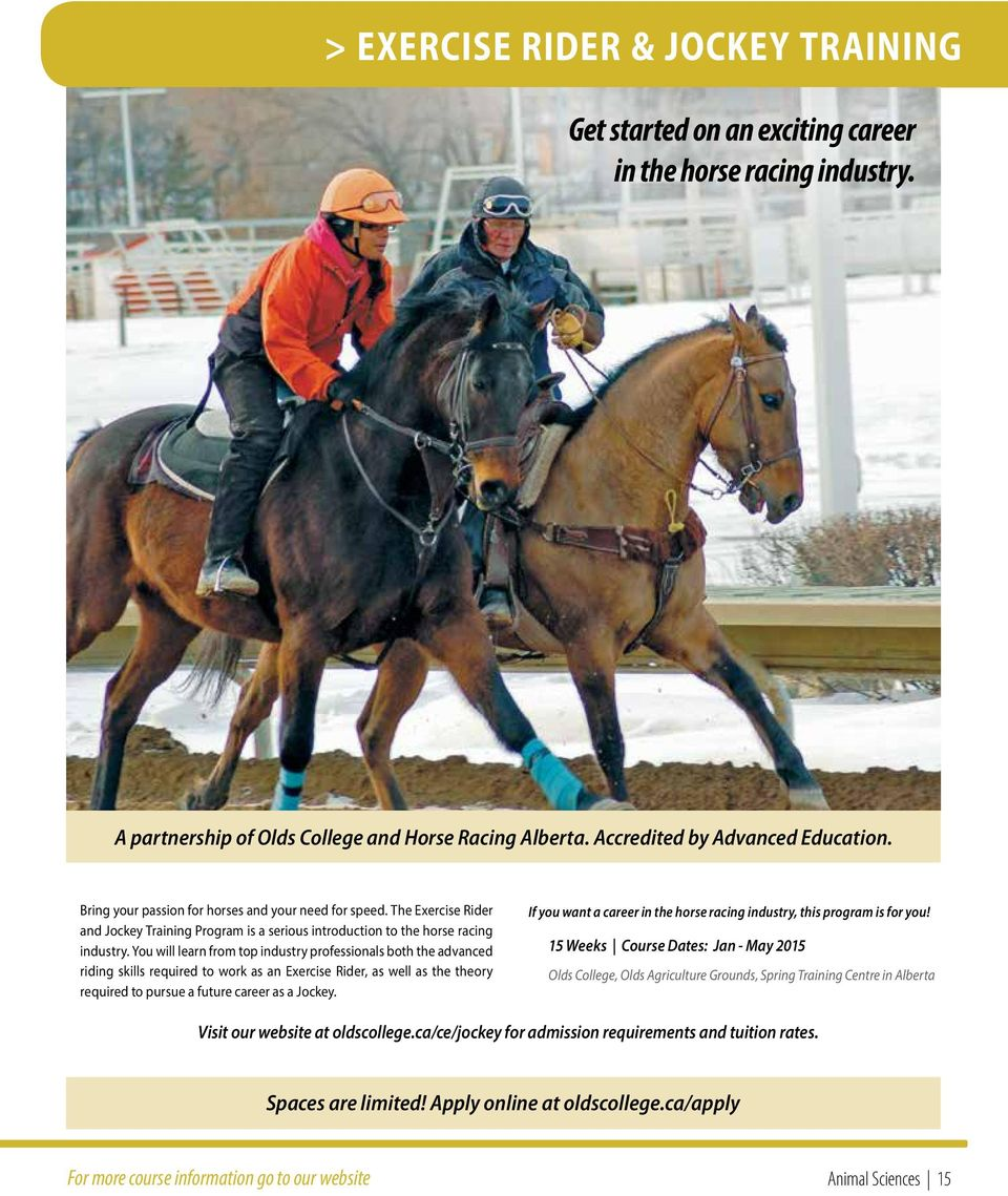 You will learn from top industry professionals both the advanced riding skills required to work as an Exercise Rider, as well as the theory required to pursue a future career as a Jockey.