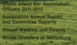 Association Annual Report and Committee