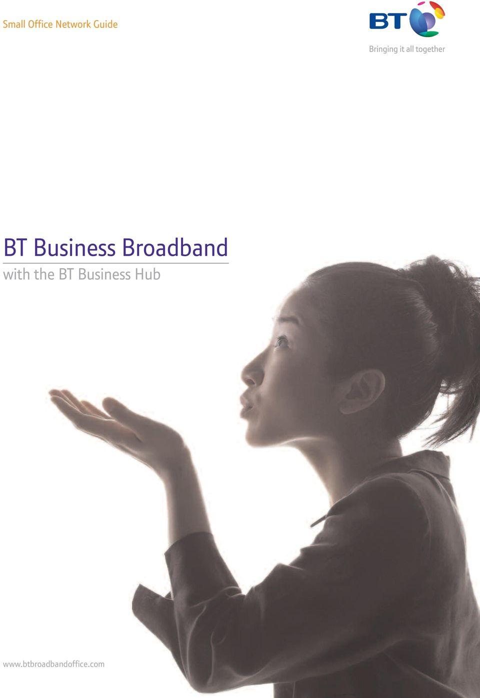 Broadband with the BT