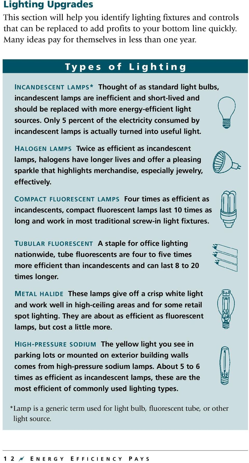 Types of Lighting INCANDESCENT LAMPS* Thought of as standard light bulbs, incandescent lamps are inefficient and short-lived and should be replaced with more energy-efficient light sources.