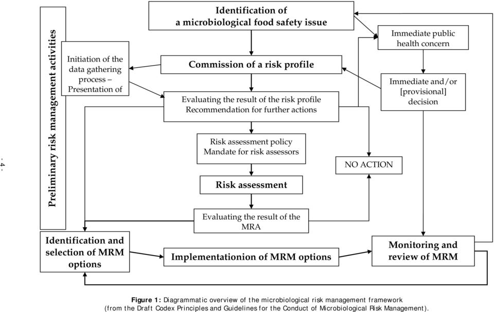 health concern Immediate and/or [provisional] decision Identification and selection of MRM options Evaluating the result of the MRA Implementationion of MRM options Monitoring and