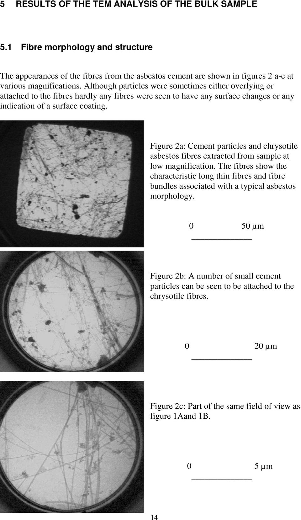 Figure 2a: Cement particles and chrysotile asbestos fibres extracted from sample at low magnification.