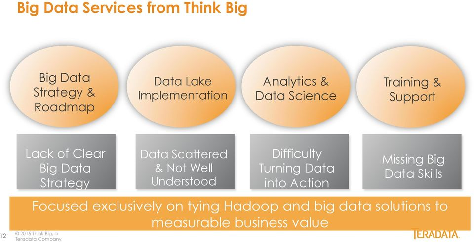Company Data Scattered & Not Well Understood Difficulty Turning Data into Action Missing Big