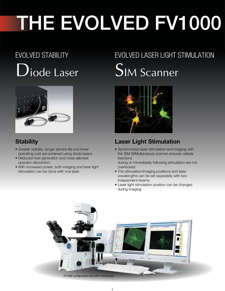 Laser Light Stimulation Synchronized laser stimulation and imaging with the SIM (SIMultaneous) scanner ensures cellular reactions during or immediately following stimulation are not