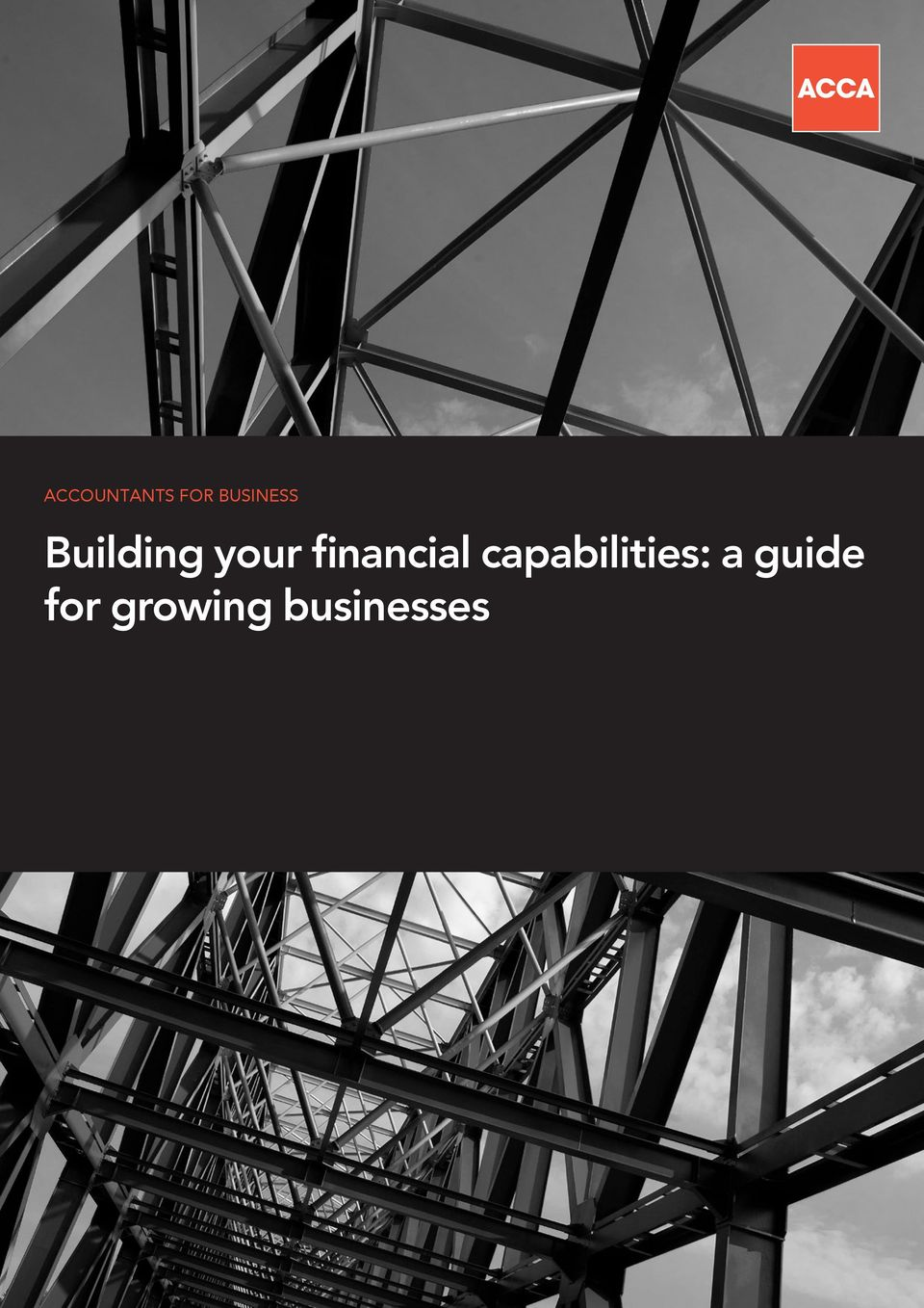 financial capabilities: