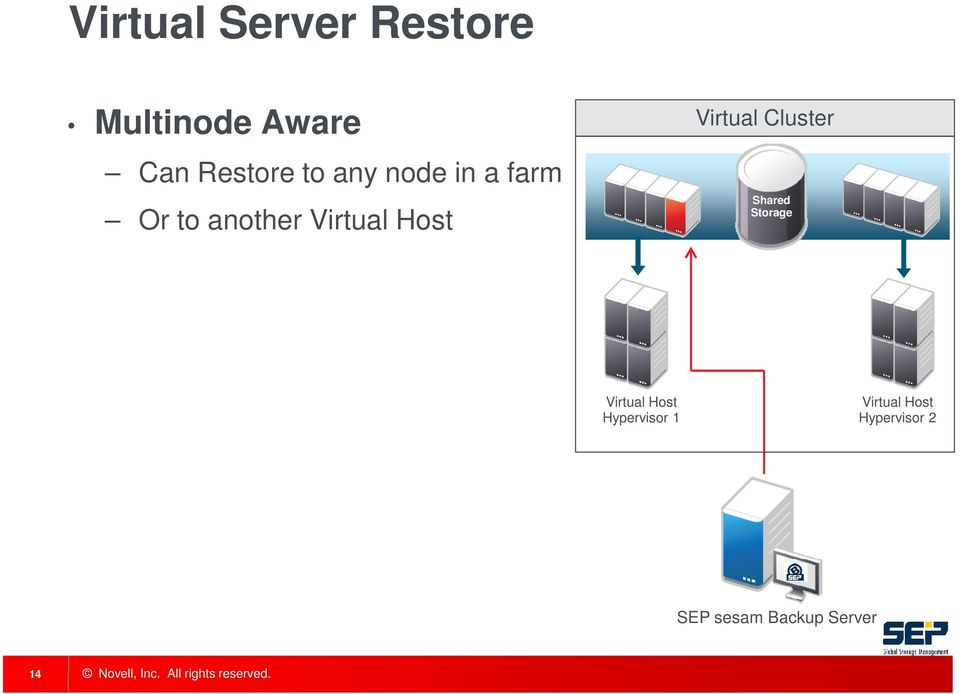 Virtual Cluster Shared Storage Virtual Host