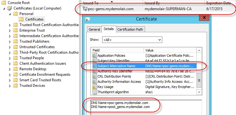 GEMS Prerequisites And the Subject Alternative Name should look like this: 10. Right-click the certificate, then select All Tasks > Manage Private Keys. 11.