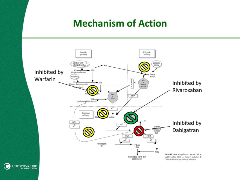 mechanism of action Gcide (000 / 0 votes) rate this definition: mechanism of action (n) the mechanism by which a pharmacologically active substance produces an effect on a living organism or in a biochemical system as, the mechanism of action of actinomycin involves its binding to dna.