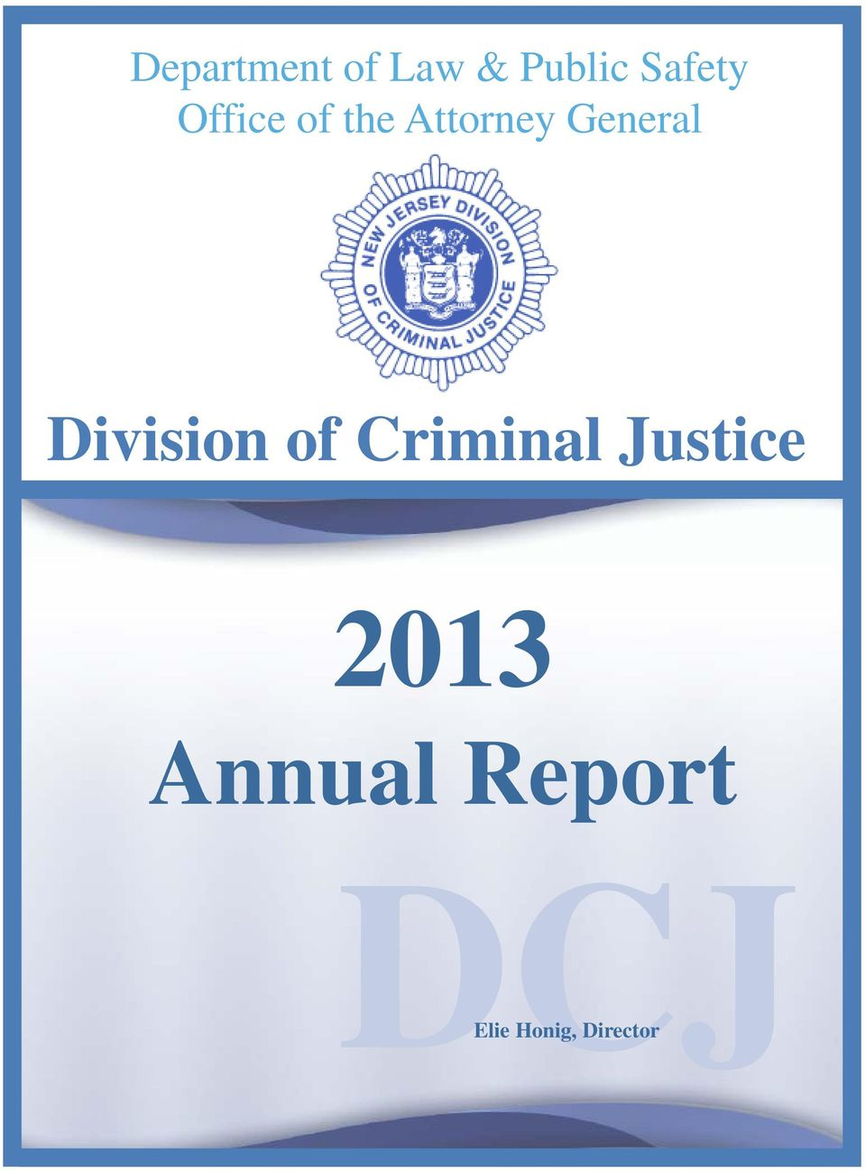 Division of Criminal Justice 2013