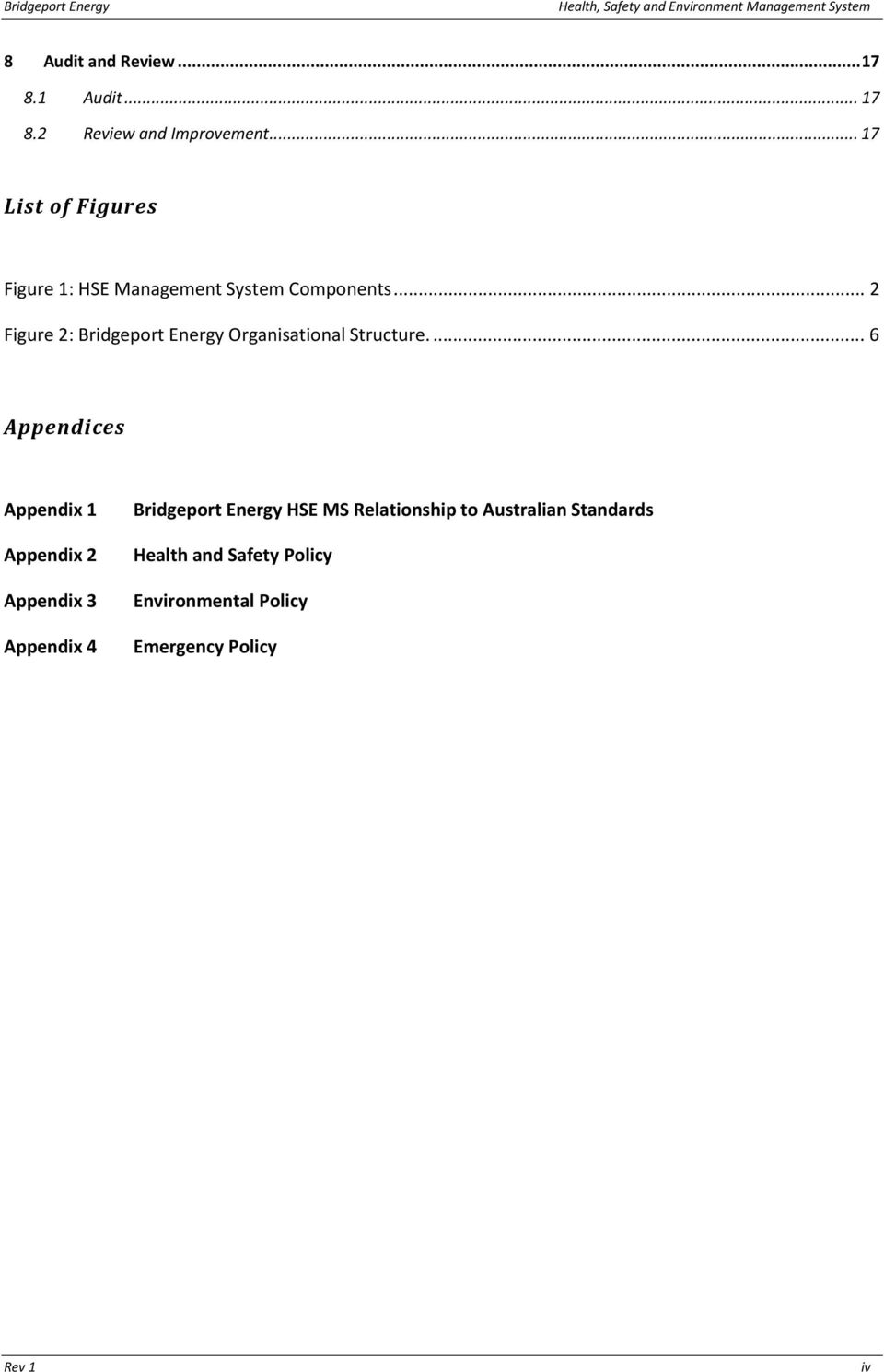 .. 2 Figure 2: Bridgeport Energy Organisational Structure.